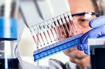 Исследование крови на ТТГ