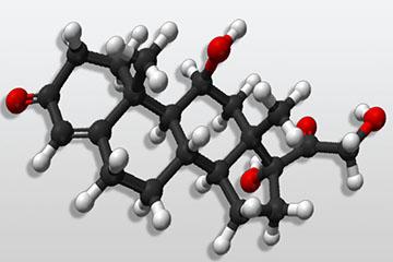 молекула кортизола