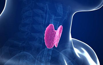 эффективность препаратов для щитовидки