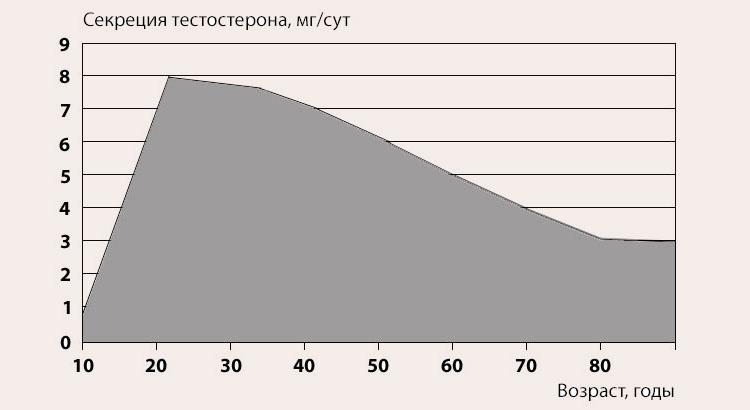 как вырабатывается тестостерон по возрастам