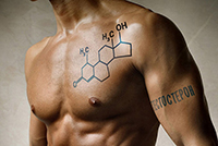 тестостерон и его значение