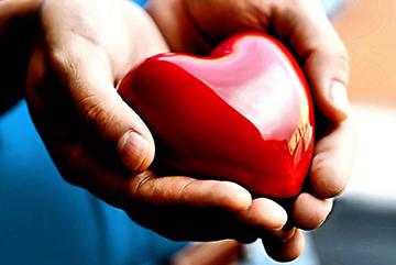 сердце и его здоровье