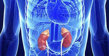гиперфункция надпочечников