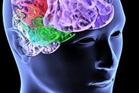 отклонения у гипофиза головного мозга