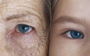 тимус у взрослых и детей